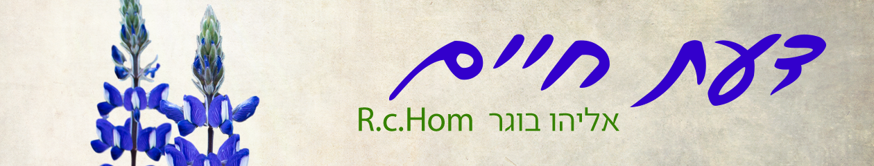 דעת חיים daatchaim אליהו בוגר
